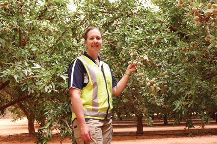 Select Harvests Jane Finch